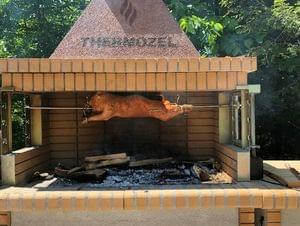 Firebrick bbq , pizza oven from high quality firebrick
